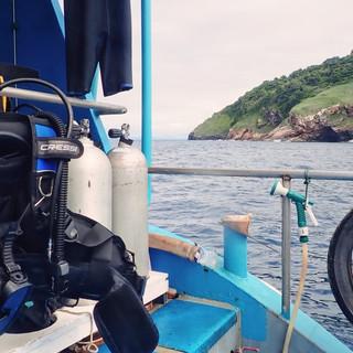 Monkey dive thailand 14.jpg