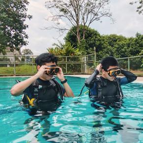 Monkey dive thailand 4.jpg