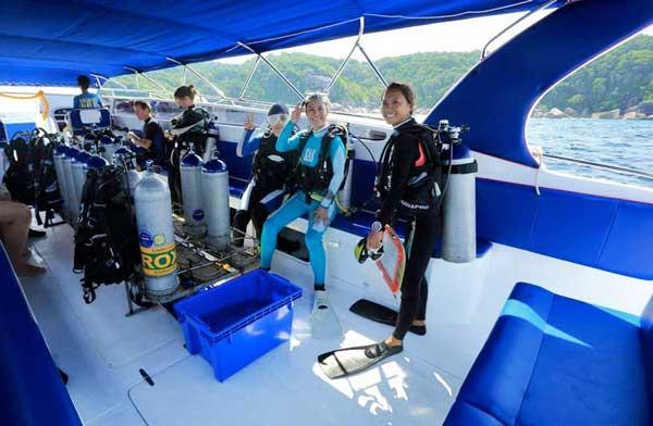 monkey dive - blue dolphin 2.jpg