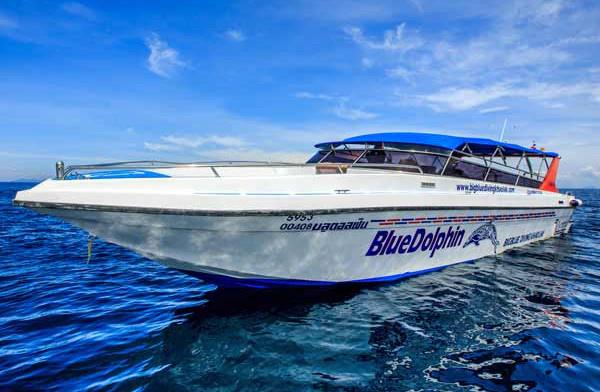MONKEY DIVE -blue dolphin.jpg