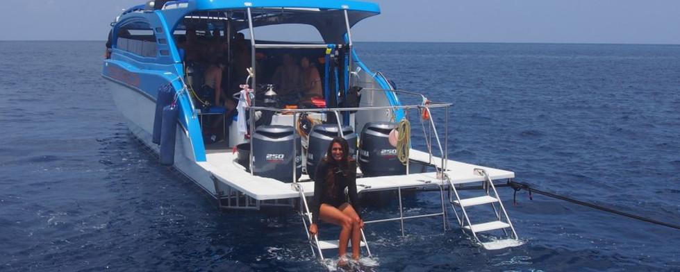 Monkey dive - blue marlin2.jpg