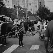 beijing intersection 2020