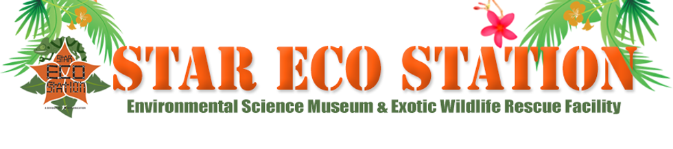 eco station, star education, culver city, animals, pet, rescue, birds, reptiles, smuggled, illegal, exotic, zoo, museum, children, family, kids, weekend, field trip, assembly, classes, school, education, environment, eco friendly