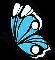 Butterfly_transparentv2.png