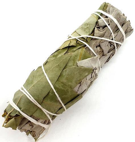 Sauge blanche Eucalyptus fagot