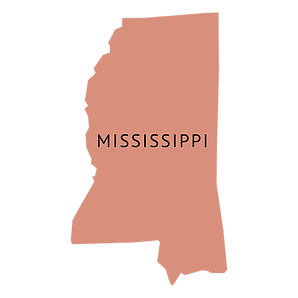 mississippi-state-plain-map-by-Vexels.pn