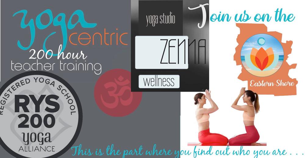 Yoga Teacher Training At Zenna