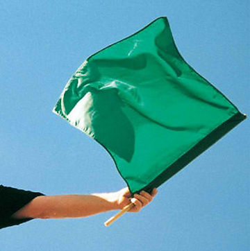 arm holding a green flag
