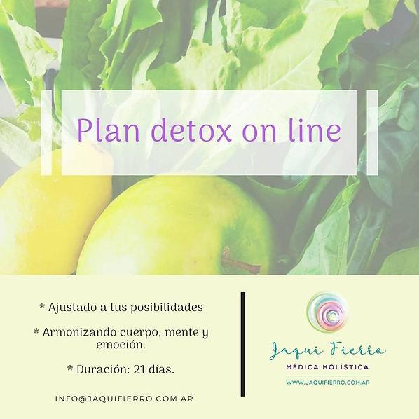 Plan Detox online.jpg