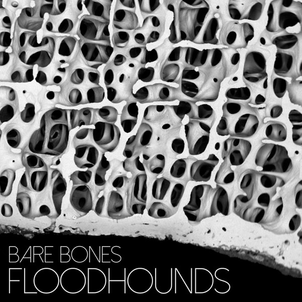 Bare Bones - FloodHounds Single Artwork