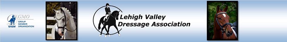 LVDA Web Logo.jpg