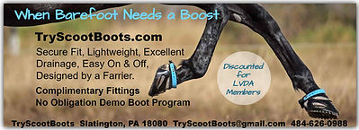 TryScootBoots Ad.jpg