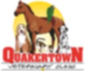 QVC Logo Redone.jpg