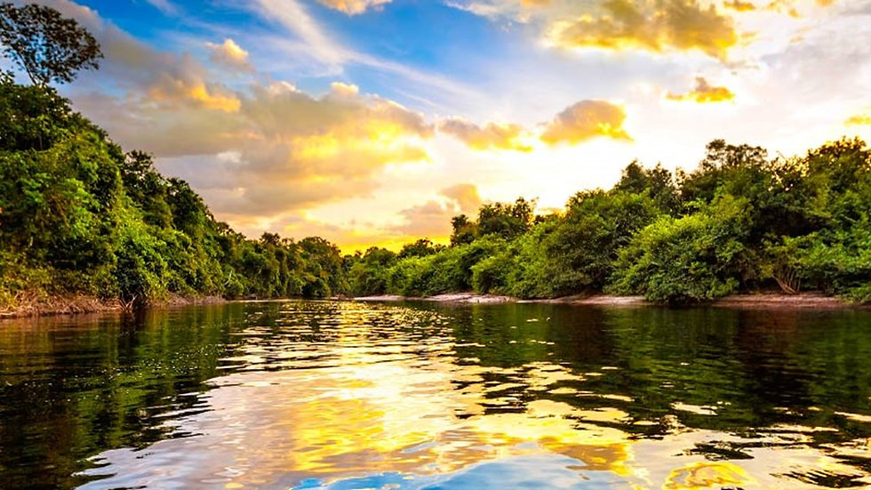 Amazon - Seabourn - 10 nights - 7 April -  45 days in advance