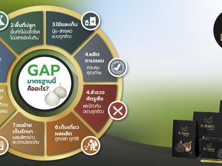 WHAT IS THE GAP STANDARD?