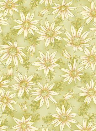 Under Australian Sun Flannel Flowers Green 0015-10
