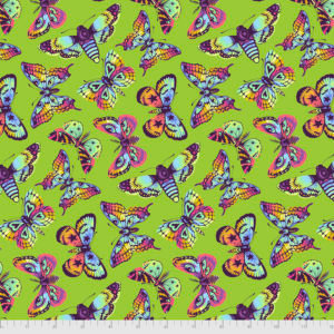 Tula Pink - Daydreamer - PWTP172.Avocado