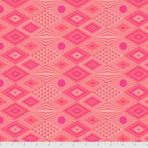Tula Pink - Daydreamer - PWTP096.Dragonfruit