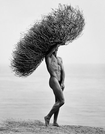 Photo by Herb Ritts, Male Nude with Tumblewwed, Paradise Cove, 1986