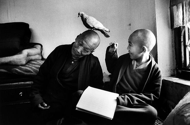 Photo by Martine Frank in Shechen Monastery, Nepal, 1996