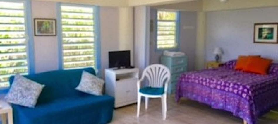 Studio Living & Bedroom