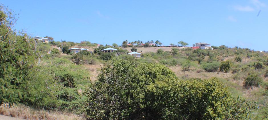 Hillside View