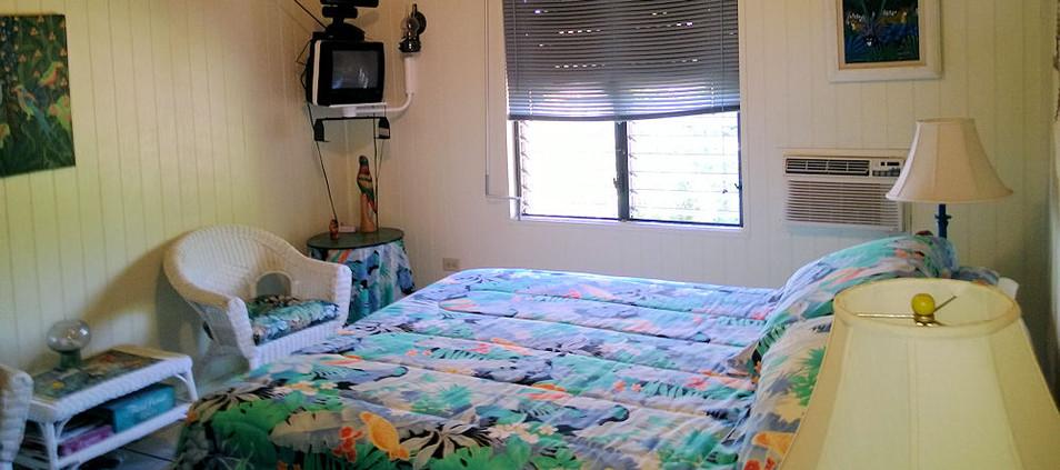 Main Floor Bedroom 3
