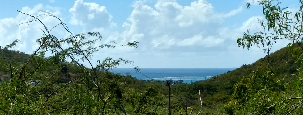 Casa Ani- Ocean view from back acreage.j