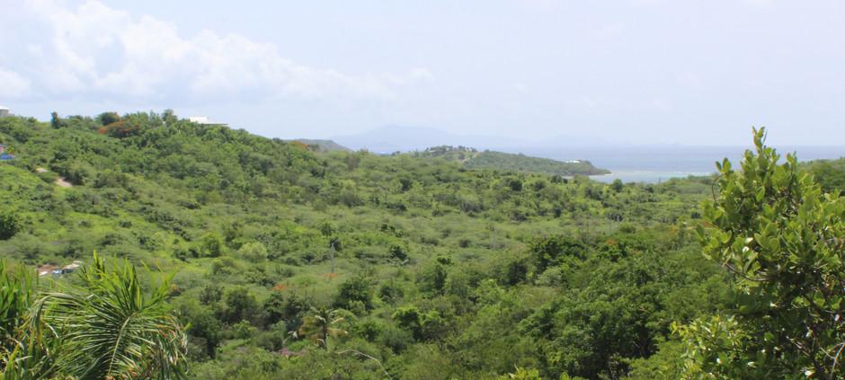 View to St. Thomas