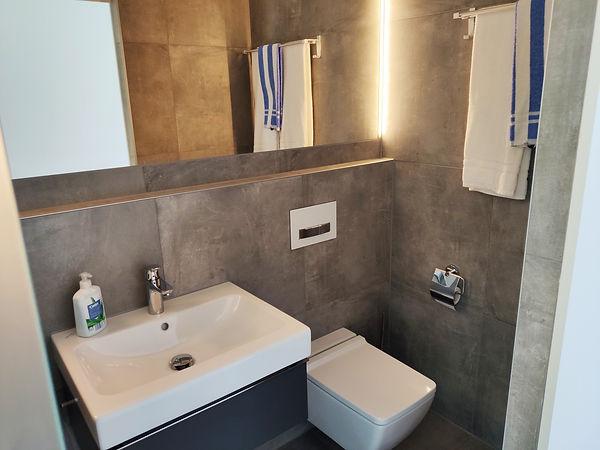 Kopie von tiny-house-bathoom-modern-big-