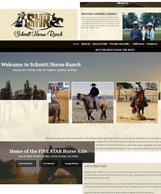 SHR website collage.jpg