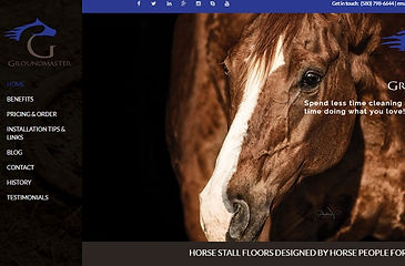 Groundmaster website screenshot.jpg