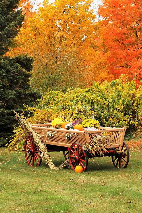 Chester Wagon