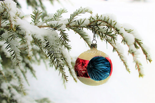 Red and Blue Ornament
