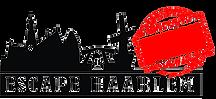 Groepsactiviteiten Haarlem