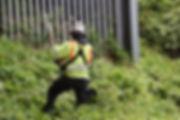 Paintel Vegetation Clearance
