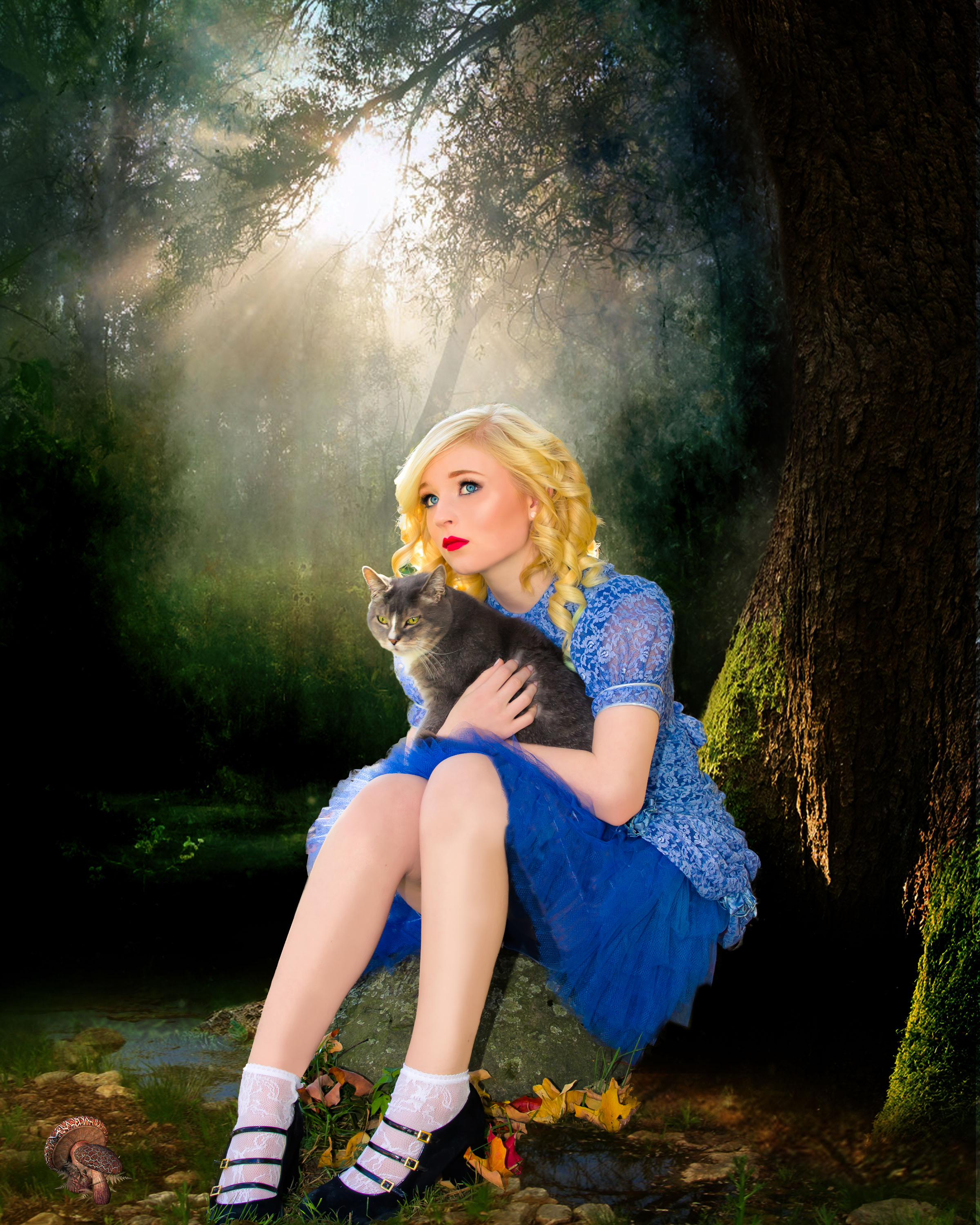 Alice In Wonderland Photoshoot