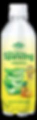 Aloe Vera Sparkling_PINEAPPLE_500 copy.p