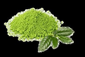 kisspng-matcha-green-tea-latte-tea-plant