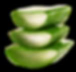 OKF_PMG_Aloe-Drink_Noni-King31.png