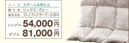 ryukusu_ste_edited.jpg