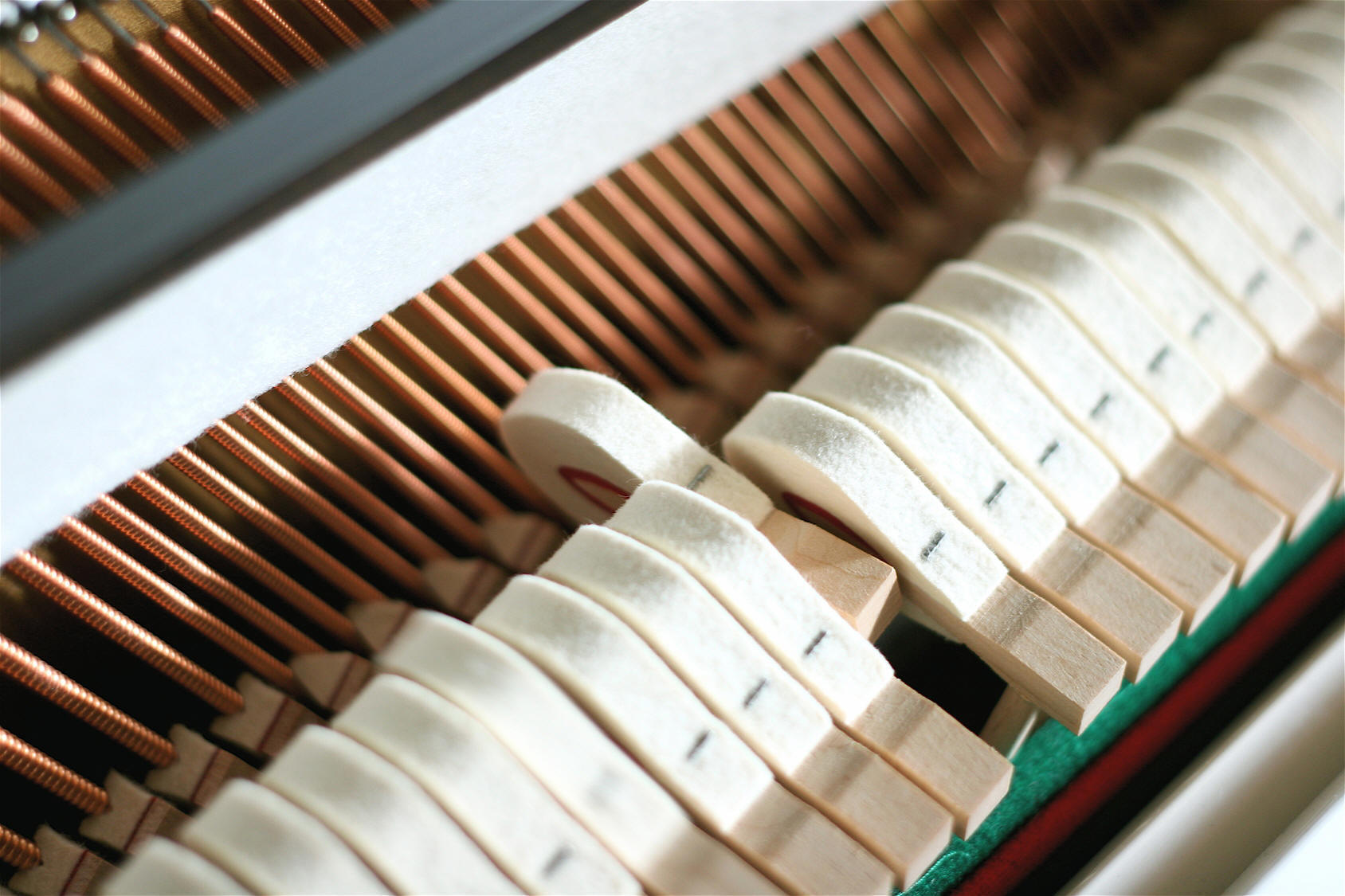 Piano Tuning and Repairs