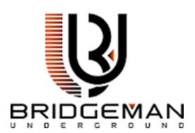 bridgeman.png