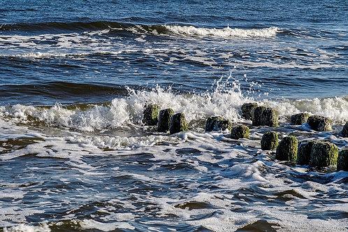 Aloe Vera Ocean Breeze Bar Soap