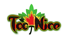 TooNice Logo.png