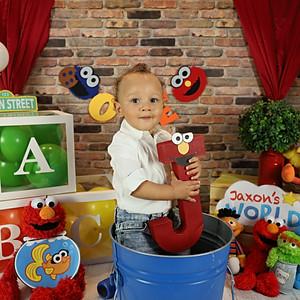 Jaxon's 1st Birthday Mini Photo Session
