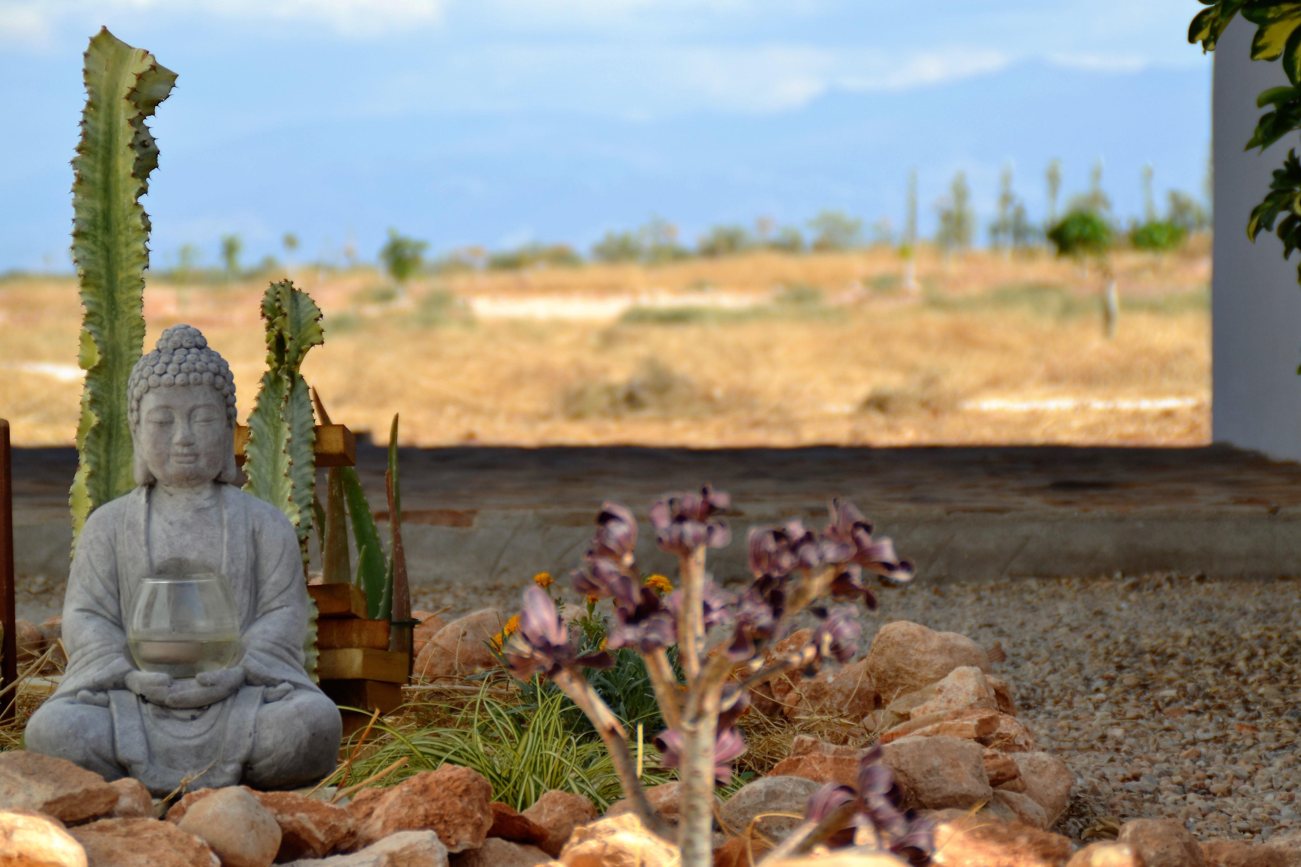 zen garden-yoga andalucia