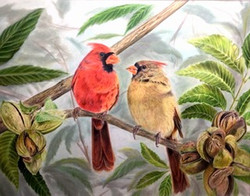 Cardinals in Pecan Tree