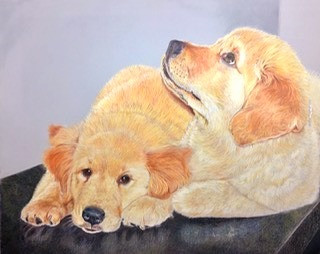 Ojas and Tejas as Pups