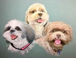 Chloe,Winnie, Chewie.jpg